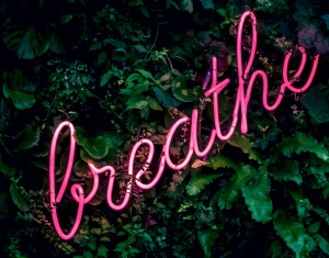 Breathe: Ted Talk: being brilliant every single day